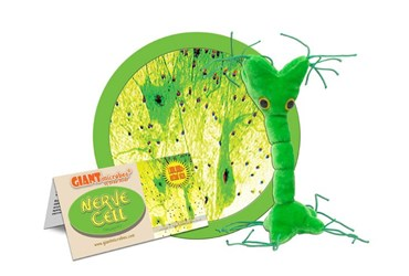 Giant Microbe® Nerve Cell