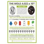 The Mole Poster